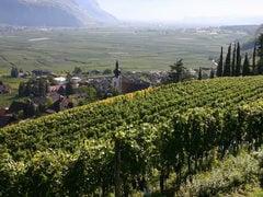 Nalles in Alto Adige