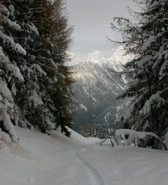 Skitouren in Südtirol