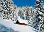 Ihre Hotels in Südtirol