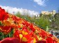 Primavera a Merano