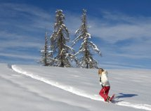 Giorni d'inverno e benessere da 339,00 Euro