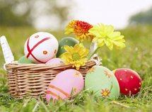 Festeggiamo la Pasqua insieme da 242,00 Euro
