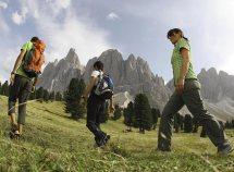 Freschezza estiva e benessere in montagna da 910,00 Euro
