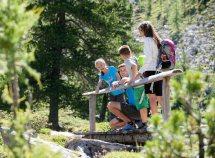Avventurose vacanze per famiglie da 499,00 Euro