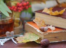 Kurze Herbstidylle ab 180,00 Euro