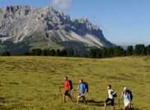 Vacanze attive nelle Dolomiti da 189,00 Euro
