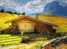 Herbstwochen im Naturpark Trudner Horn ab 402,00 Euro