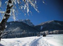 Natale all'Alpenblick da 714,00 Euro