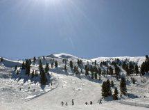 Safari sugli sci nelle Dolomiti 7=6 da 360,00 Euro