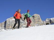 Attivi nelle Dolomiti da 283,00 Euro