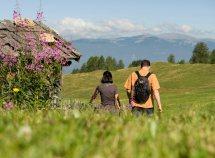 Escursioni e relax da 335,00 Euro