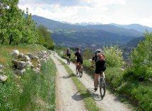 Individuali giorante al Mountain-Bike da 306,00 Euro