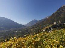 Settimane escursionistiche da 462,00 Euro