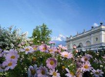 Frühlings- und Sommerwochen ab 629,00 Euro