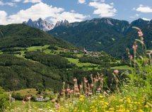 Escursioni in Valle Isarco da 219,00 Euro
