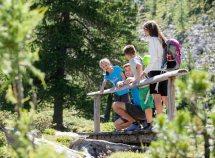 7 giorni di escursioni e attività ricreative in Val Pusteria da 525,00 Euro