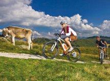 Esperienza in bici nelle Dolomiti da 332,00 Euro