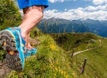 Vivere la montagna da 102,00 Euro