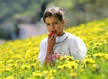 Settimana delle fragole in Val Martello da 448,00 Euro