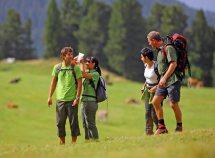 Vacanza breve 4=3 in Val Venosta da 207,00 Euro