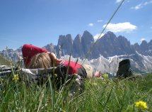 Settimane di benessere & trekking 7=6 da 648,00 Euro