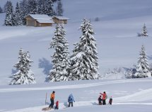 Winterwandern & Wellness ab 295,00 Euro