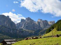 Speciale estate sulle Dolomiti da 342,00 Euro