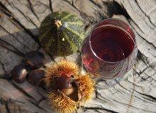 Törggelen, Wein, Aktivsein und Wellness